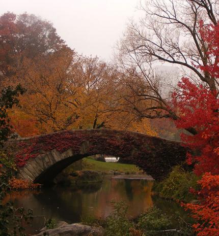 6 pár előtte-utána kép az ősz okozta csodálatos változásokról