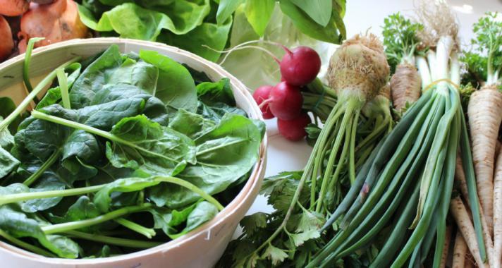 Inzulinrezisztencia étrend: a 160 gramm ALAPÚ szénhidrátdiéta
