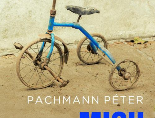 Pachmann Péter: Misu háborúja (kritika)