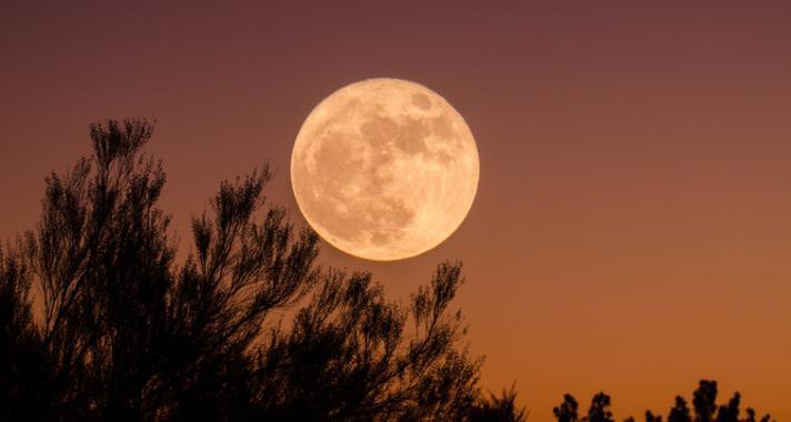 Varázslatos éjszaka – Kékholdas, szuperholdas Telihold az Oroszlán jegyében