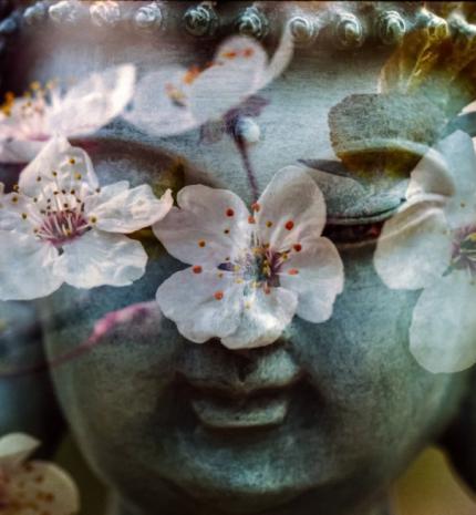 6 fajta meditációs gyakorlat