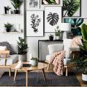 Top10: borítsd be pálmalevelekkel az otthonodat