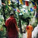 Mi a boldogás?  Egy buddhista mester, Thich Nhat Hanh megválaszolja