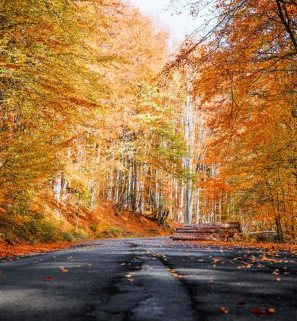 Magyarország legszebb kiránduló helyei ősszel