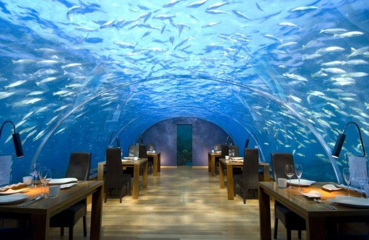A világ egyetlen tengeralatti étterme
