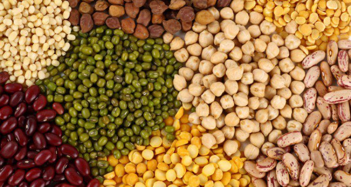 Vega és vegán fehérjeforrások