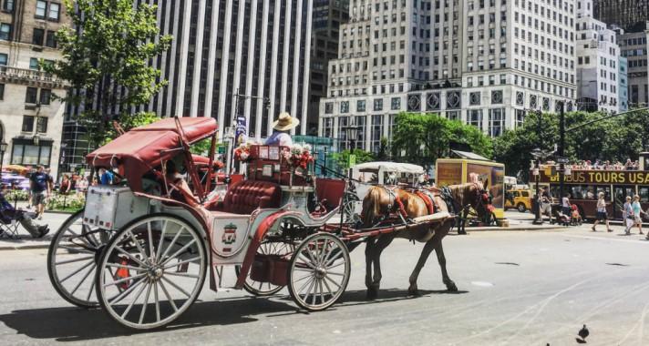 Amerikai álom – avagy 3 hónap New York-ban 2. rész