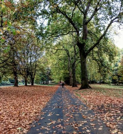 20 csodás fotó az őszi Londonról