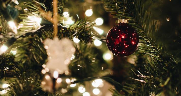 Amit eddig nem tudtál a karácsonyfáról