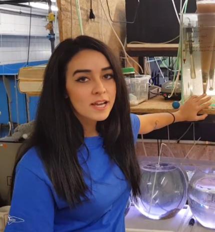 Kulisszatitkok: a Tropicarium halas állatgondozójának egy munkanapja