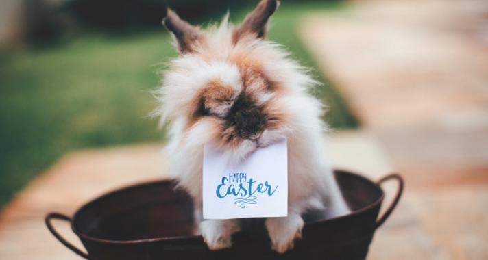 Húsvéti locsolóversek kicsiknek, és nagyoknak
