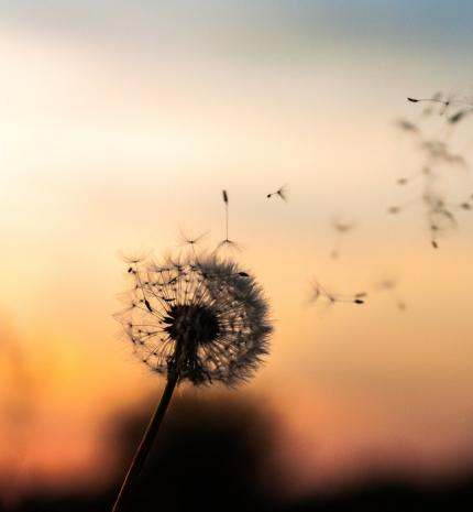 Motivációs idézetek, amik segítenek túllendülni a nehézségeken