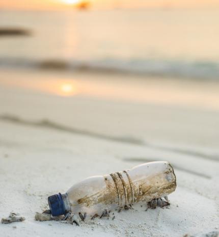 Szabaduljunk meg a műanyagoktól legalább 31 napra!