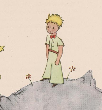 'Mindenkitől azt kell követelni, amit az illető megtehet.' Idézetek A kis hercegből