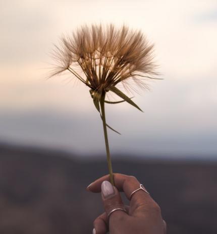 Lélekmentő gondolatok, melyek segítenek átvészelni a nehéz napokat