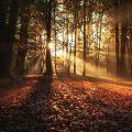 Stylelife - A nagy őszi bakancslista: Magyarország legszebb kirándulóhelyei