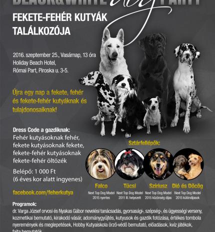 Black & White Dog Party újratöltve